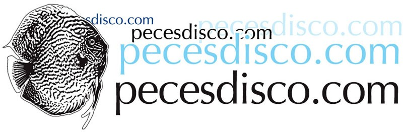 Peces Disco.com